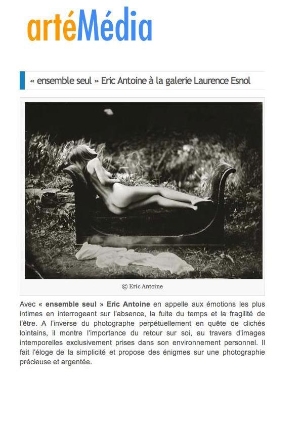 thumbnail of 2013-artémédia
