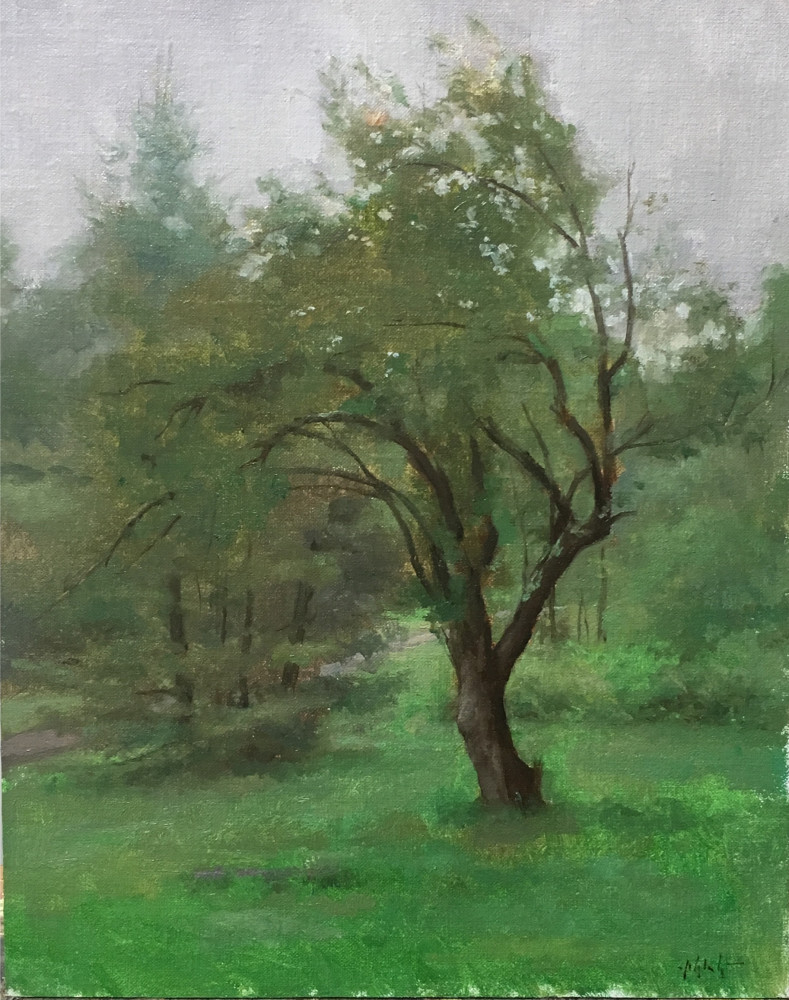Travis Schlaht Overcast Tree 2017