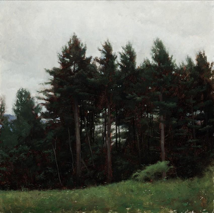Travis Schlaht Trees 1 2008
