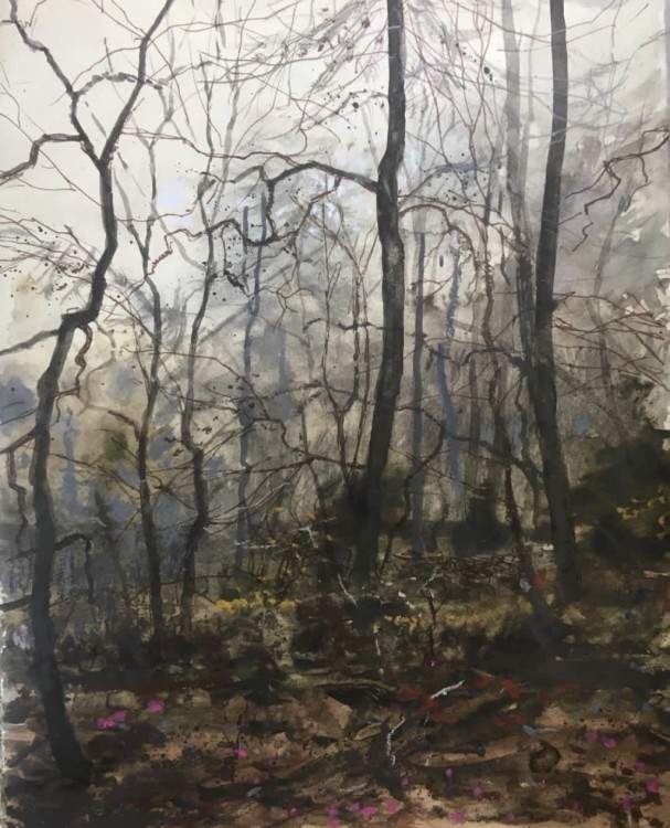 H Craig HANNA Pink flowers and Trees at spring 2019