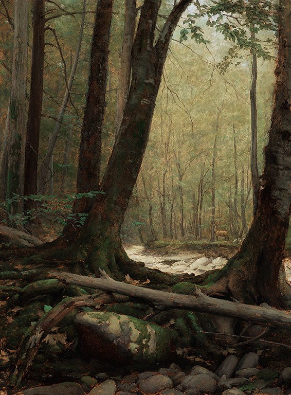 Travis Schlaht Forest Interior 2021